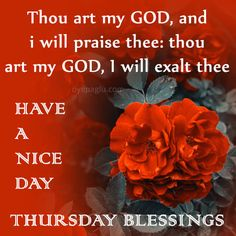 Thursday Morning Quotes, Good Morning Happy Thursday, Happy Thursday Quotes, Good Morning God Quotes, Good Afternoon Quotes, Thankful Thursday, Happy Morning, Good Morning Greetings, Good Morning Images