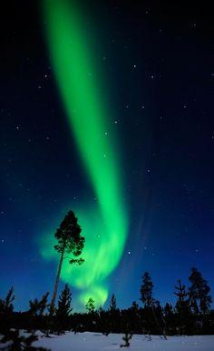 Aurora borealis by twila