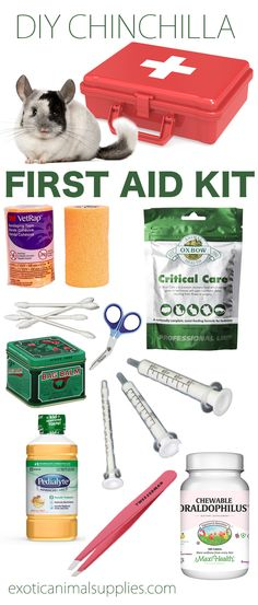 Chinchilla First Aid Kit for Emergencies Put together your own DIY chinchilla first aid kit so you& prepared for any illness or injury. Have everything you need when you need it most to take care of your sick chinchilla in an emergency. Chinchilla Care, Diy First Aid Kit, Tortoise As Pets, Cheap Pet Insurance, Pet Rabbit, House Rabbit, Healthy Pets, Pet Care Tips, Pet Health
