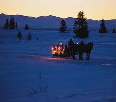 lovely winter sled.