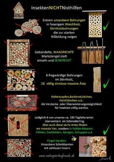 Schautafel poster Nisthilfe insect nisting aid Insektenhotel insect hotel Wildbiene wild bee Neudorff bug house (With images) Garden Bugs, Garden Insects, Garden Pests, House Insects, Wild Bees, Bug Hotel, Potager Bio, Mason Bees, Bee House