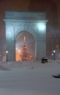 Snowy Christmas tree, Washington Square park, New York City, NY