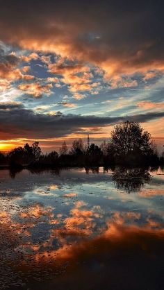 amazing sunset reflection #clouds red tree lake sea landscape nature beautiful