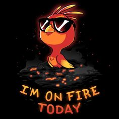 I'm On Fire Today T-Shirt TeeTurtle