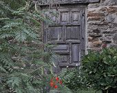 Old Door at the Mission Ruins, San Antonio, Texas, 8 x 10 print
