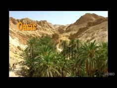 travel to the beautiful mountain Oasis of Chebika and Tamerza on the Sahara Explorer Excursion in Tunisia. Desert Oasis, Desert Life, Desert Art, The Beautiful Country, Beautiful World, Largest Desert, Destinations, Story Of The World, World Geography