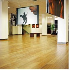 Some Advantages of Using The Vinyl Flooring Interior Decorating