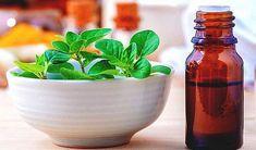 Uleiul de oregano are proprietăți antibacteriene, antivirale, antifungice și imunostimulatoare, fiind considerat unul din cele mai puternice antibiotice naturale.