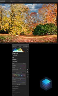 Editing a fall photo in Luminar 4