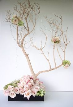 Neat Idea for Money Tree----My Photo Album Wedding Flowers Photos on WeddingWire