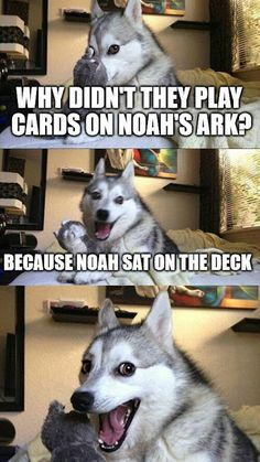 GET OFF THE BLASTED DECK, NOAH