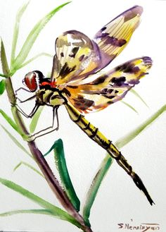 Dragonfly original watercolor painting yellow by ORIGINALONLY, $24.00