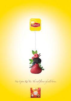 Lipton tea: Berries » Naturel, photographique