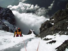 eiger northface - summit icefield / gipfeleisfeld