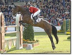 Beezie Madden and her horse Authentic. Amazing :) that equitation.... That horse is GORGEOUS