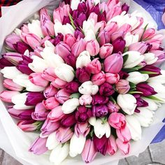 47 best Ideas for garden rose bouquet pink pretty flowers Beautiful Bouquet Of Flowers, Beautiful Flower Arrangements, Tulips Flowers, Fresh Flowers, Spring Flowers, Beautiful Flowers, White Tulips, Garden Rose Bouquet, Tulip Bouquet