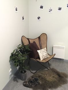 Reading corner #butterflychair #homeandcottage #polaroids