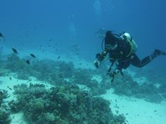 Me in the Red Sea