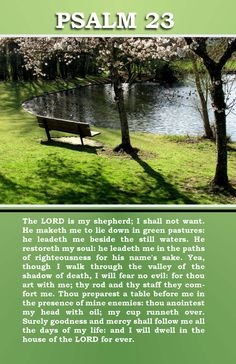 Psalm 23 - a prayer for stressed out Stepmoms