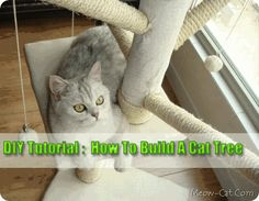 DIY-Tutorial---How-To-Build-A-Cat-Tree