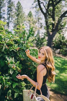 Berry Picking (Gal Meets Glam)