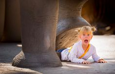 Tweeted by Erika Thornes ‏@EThornes --> @kelbyone had a great time at the San Diego Zoo for #WWPW2014