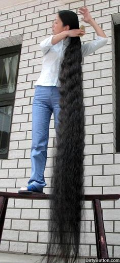 The Guinness World Record for the world's longest hair belongs to China's Xie Qiuping whose hair measures 5.