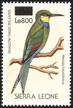 Swallow-tailed Bee-eater stamps - mainly images - gallery format