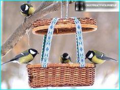 Krmítka pro ptáky domácí zvířata