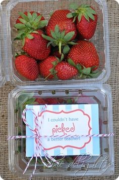 Strawberry Teacher Gift Cute Teacher Gifts, Teacher Thank You, Teacher Appreciation Gifts, Thank You Gifts, Teacher Stuff, Inexpensive Teacher Gift Ideas, Diy Gifts Cheap, Easy Gifts, Fruit Gifts
