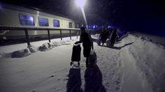Suomen kylmä sää on yksi syy turvapaikanhakijoiden paluuseen kotimaihinsa.