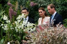 Prince William, in Singapore, views the orchid named after his mother, Diana, shortly before her death