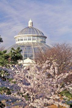 Visiter New York Botanical Garden