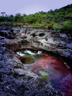Caño cristales - Sierra de la macarena - Colombia