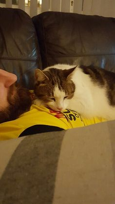 He loves his dad....snuggles protection and love between cat and dad