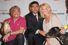 """Compassion Revolution Launch!    Check out, """"The Dog Whisperer, """"Cesar Millan,"""" Katherine Heigl, and her deceased but not forgotten Brother, Jason, at the """"Jason Debus Heigl Foundation"""" for abandon animals!  The Heigl Farm/Ranch in Utah, is home for many of their Adoptive Pets .... Take a 'Moment' an vIsit this site, checking out Choices which we can make a difference. Thanks, from; Ron's AlabamaCajunWoodShop."""
