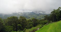 The first major stop on the road between Boonah and Killarney is the Spring Creek Mountain Cafe and Carrs Lookout. On a non-cloudy day you can see many mountains in the distance.