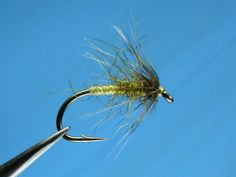 Olive Seal soft hackle flymph - by William Anderson (Spider Flymph Soft Hackle)