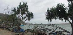 """In der Nacht zum 14. März 2015 traf  Zyklon """"Pam"""" den nordöstlich von Australien gelegenen Inselstaat Vanuatu mit voller Wucht. Der Wirbelsturm der höchsten Kategorie 5 erreichte in Sturmböen Windgeschwindigkeiten von mehr als 300 Kilometern pro Stunde Vanuatu, Water, Outdoor Decor, Plants, Swirls, Australia, Night, Gripe Water, Plant"""