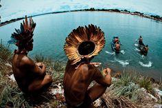 * Brazilian Amazon *