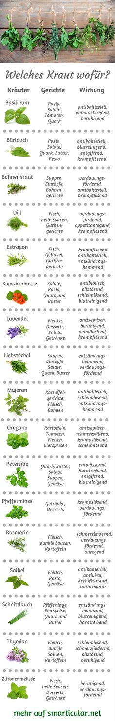 Küchenkräuter-ABC: Welches Kraut wofür, was passt wozu? So many garden herbs, but you do not know where to go? Then let yourself be inspired by our little herbal ABC, so you always know which herbs are best for your food! Nutrition Plans, Health And Nutrition, Kitchen Herbs, Little Gardens, Healthy Diet Recipes, Eat Smart, Food Facts, Health Facts, Herb Garden