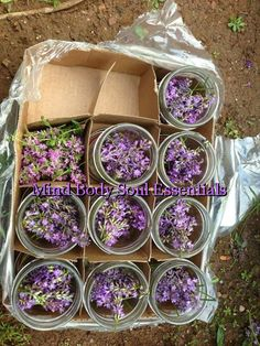 How to Make an Herbal Oil Infusion (Lavender)