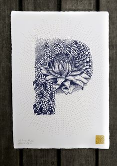 French illustrator Valérie Hugo, specialized in silkscreen printing and wall painting, has recently did a complete floral and animal alphabet. Alphabet A, Animal Alphabet, Alphabet Charts, Inspiration Typographie, Silk Screen Printing, Illuminated Letters, Typography Letters, Letter Art, Lettering Design