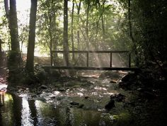 big canoe photos | Parks & Trails Information . Maps and Trail information are available ...