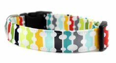 Bow Wow Couture Dog Collar in Waterfall available at www.ZoePetSupply.com