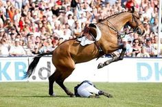 bridles-and-browbands: jumping-with-the-stars: Leap frog! this just proves to you that the horse would never hurt his rider intentionally, he's jumping over him!
