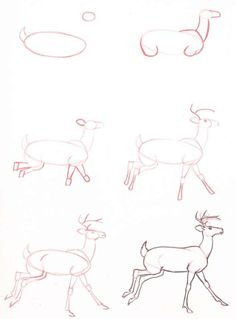 Exciting Learn To Draw Animals Ideas. Exquisite Learn To Draw Animals Ideas. Animal Sketches, Animal Drawings, Drawing Sketches, Pencil Drawings, Sketching, Drawing Animals, Drawing Lessons, Drawing Techniques, Art Lessons