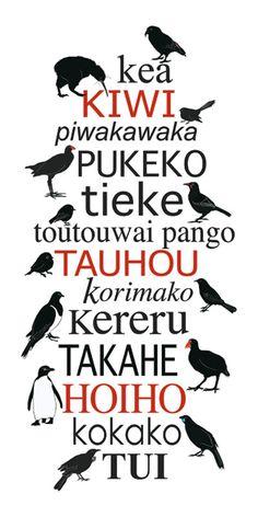 Are tui birds my new favorite bird just because I love waking up to their bird call? Yes, yes they are (I do also truly love takahe and the way they look like dinosaur chickens) Art Maori, Bird Masks, New Zealand Art, Nz Art, Kiwiana, Bird Art, Beautiful Paintings, Beautiful Birds, Art School