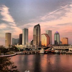 Downtown Tampa, from Harbor Island