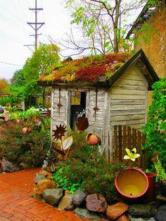 Staple Cute little garden shed with plants on the roof.Cute little garden shed with plants on the roof. Outdoor Projects, Garden Projects, Yard Art, Dream Garden, Home And Garden, Family Garden, Garden Fun, Rooftop Garden, Gravel Garden